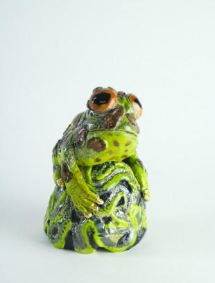 Splendor horned frog on brain coral
